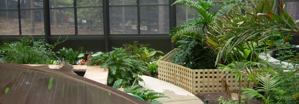 Turn Your Pool Enclosure into a Beautiful Garden Sanctuary